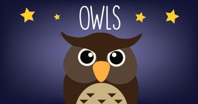 owls_big
