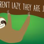 sloth_big